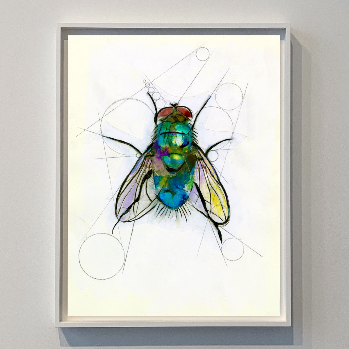 contemporary artwork of a fly