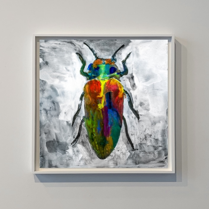 contemporary artwork depicting a bug by gregory beylerian